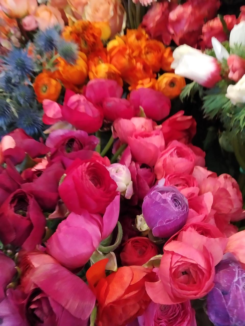 fleurs-voyage-bordeaux