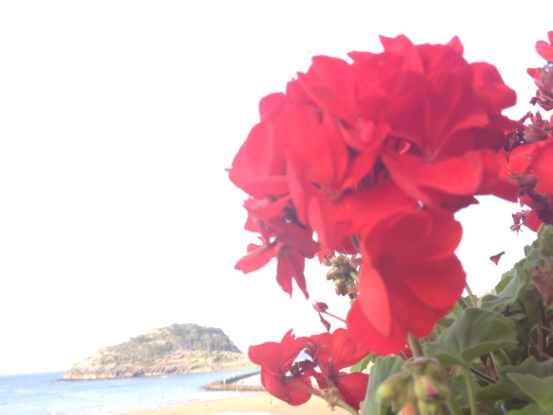 isla-bonita-voyage-leikeitio